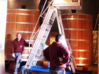 Ladder for barrels and wine tanks