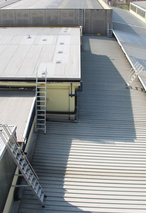 Extension ladders for roof access