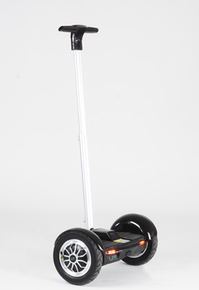 Urban Rover Stand Light